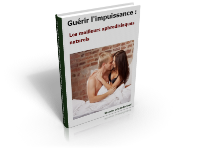 cover-impuissance-400