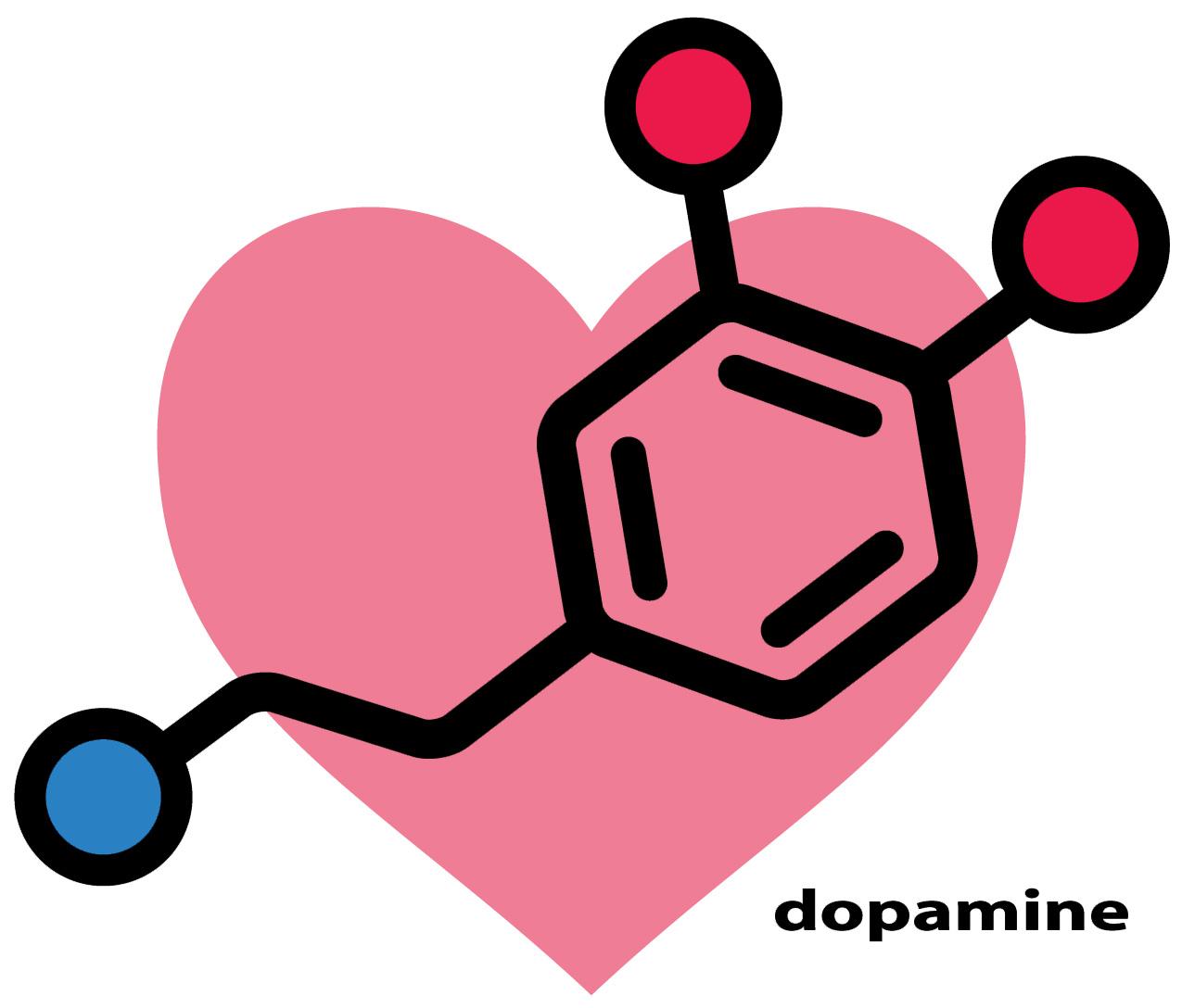 dopamine hormone